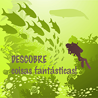 discover-200
